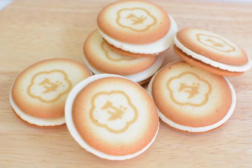 梅田チーズラボ クッキー