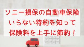 ソニー損保 自動車保険 おすすめ